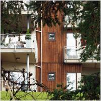 Elvestien er et uvanlig leilighetsprosjekt. En seniorgruppe gikk sammen om å bygge tilpassede boliger for alderdommen.